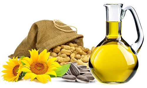 Edible Oil Plants : Manufacturer of vegetable oil extraction equipment