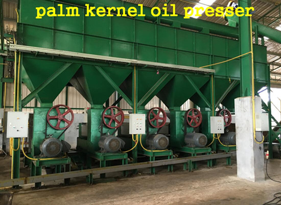 New -style palm kernel oil processing process machinery