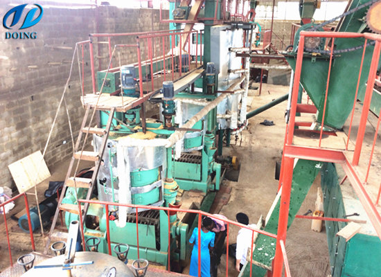 60tpd palm kernel oil pressing & extraction plant in Nigeria
