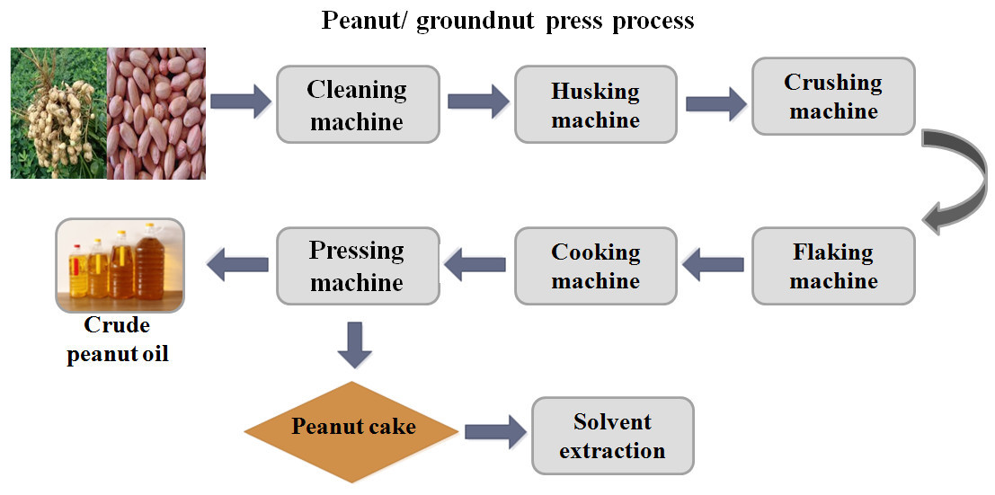 peanut oil press process
