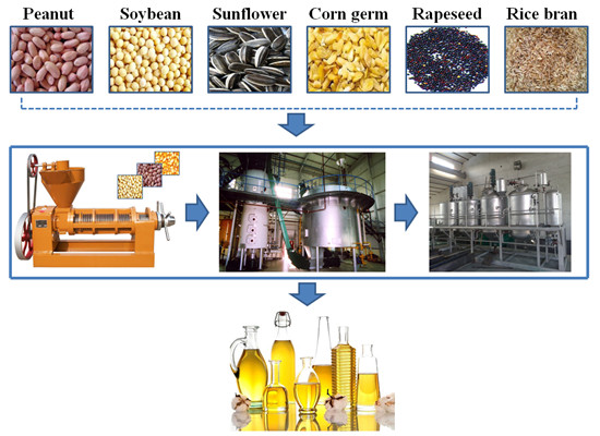 soybean oil mill plant