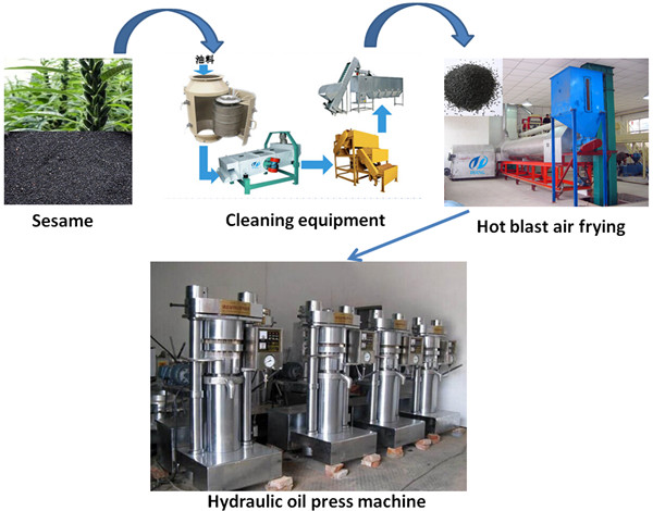 sesame oil extraction Manufacturer of oil extraction machine - cottonseed oil extraction machine, groundnut oil extraction machine, cashew oil extraction machine and almond oil extraction.