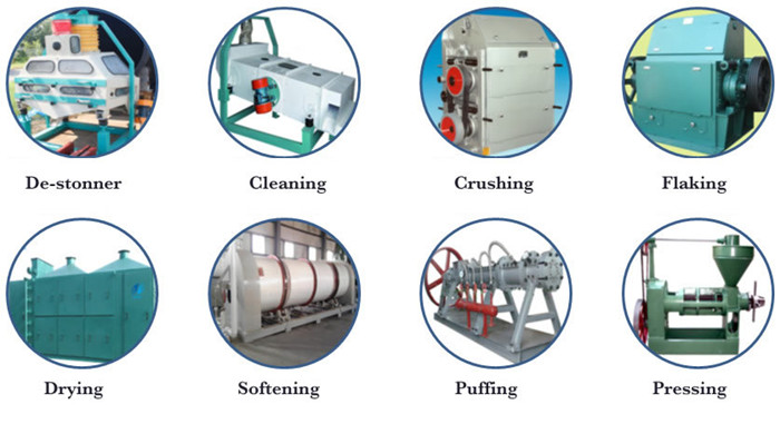 oilseed processing machine