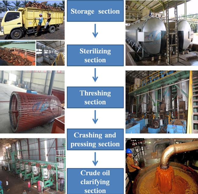 Palm Oil Production Business Plan Palm Oil Processing