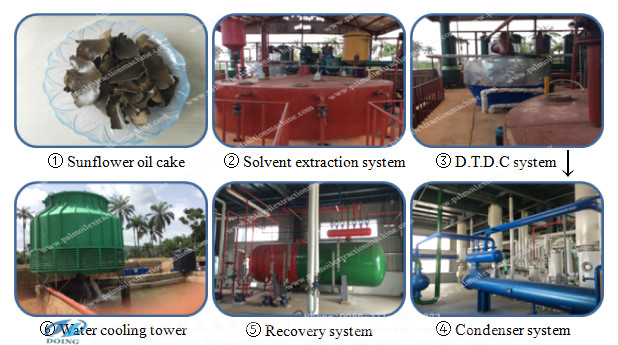 soya oil extraction process machinery