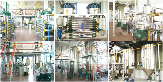 large scale palm oil refinery plant