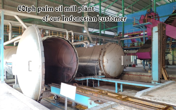 palm oil mill plant in indonesia