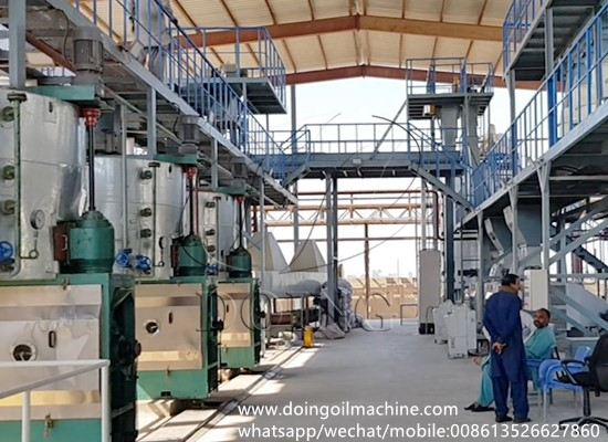 Groundnut oil press production line