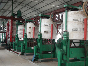 Sunflower Seed Pretreatment/ Press Equipment