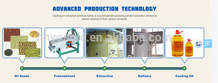 The main processes of producing vegetable oil__DOING News