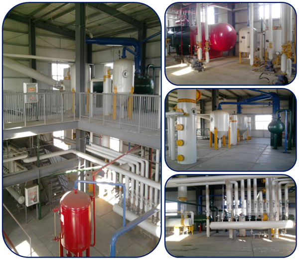Peanut/groundnut oil extraction process machinery