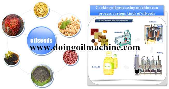 rapeseed oil production process
