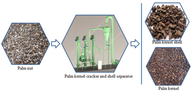 palm nut cracaking and separating machine