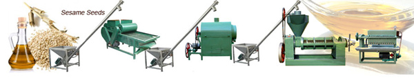 sesame oil extraction line
