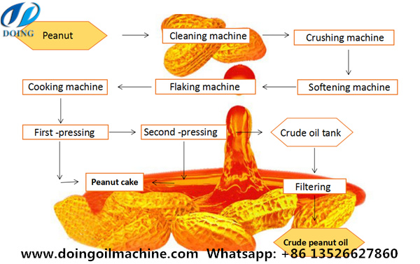 peanut oil extraction process