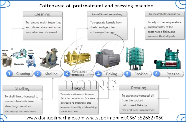cottonseed oil production machine
