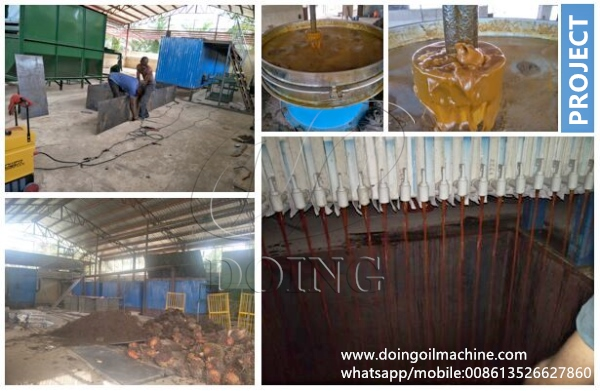 palm oil mill project